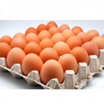 Huevos AAA colorado panal x 30