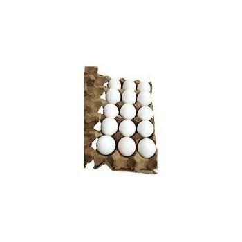 Panal de Huevos AA x 15...