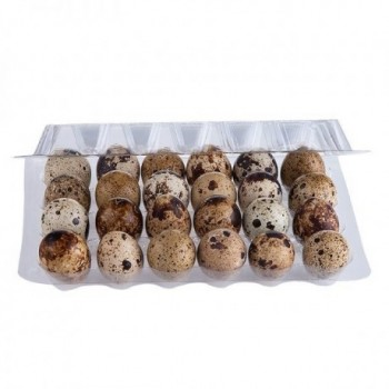 Huevos de Codorniz x 24