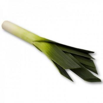 Cebolla Puerro x Lb (500gr)