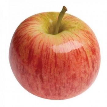 Manzana Gala x Unidad