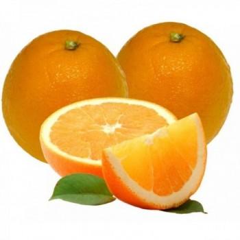 Naranja Sweet x Lb