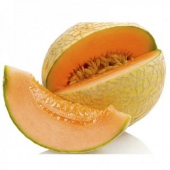 Melon Cantaloup x Kg